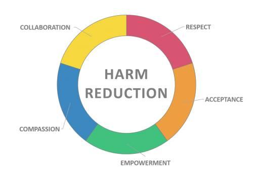 11 21 2017  U2013 Jbc  A Harm Reduction Conversation With A Family Nurse Practitioner