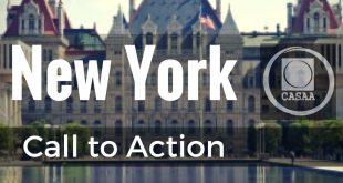 New York | CASAA